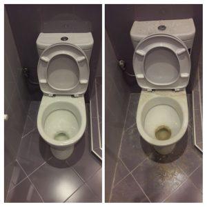 Как да постигнем перфектно почистване на тоалетна чиния